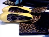 Leo inside Dolce&Gabbana